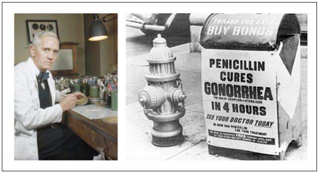 Alexander Fleming dan Karyanya yang meraih Penghargaan