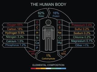 10 bahan kimia penyusun tubuh manusia