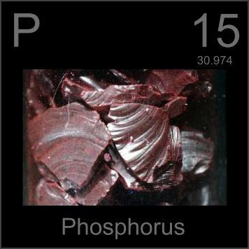 Unsur Fosfor