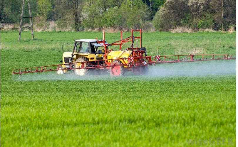 Urea Untuk Pupuk Pertanian