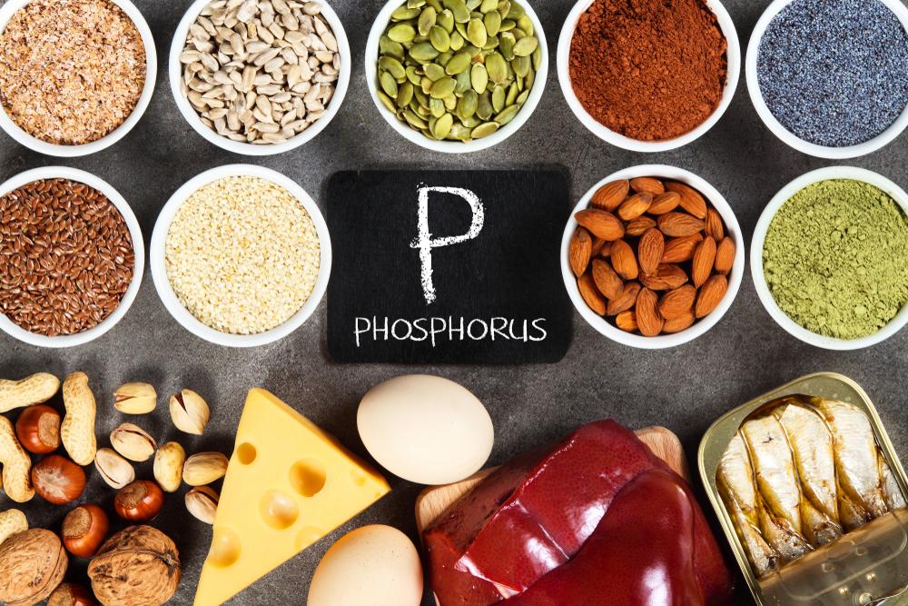 Sumber Fosfor