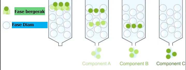 Kromatografi: Pengertian, Jenis dan Kegunaan